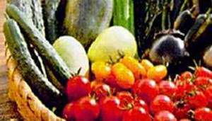 入門野菜づくり教室の開催お知らせ